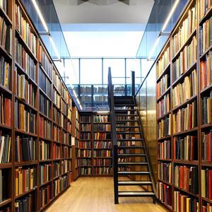 Библиотеки Галича