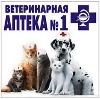 Ветеринарные аптеки в Галиче
